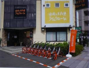 Bike Sharing China Trends